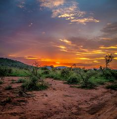 Sunset at Madikwe Game Reserve, South Africa