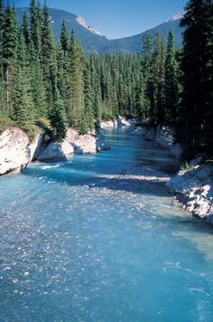 Vermillion River at Vermillion Crossing in Kootenay National Park in British Columbia.
