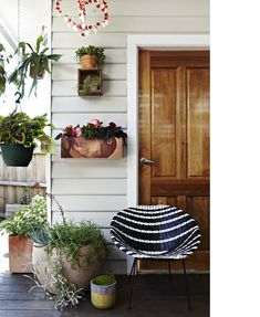 Basket chair and plants - perfect match