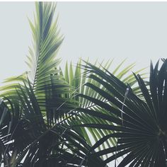 ☼//walkin on sunshine//☼ |follow| beauty b☼ ☾