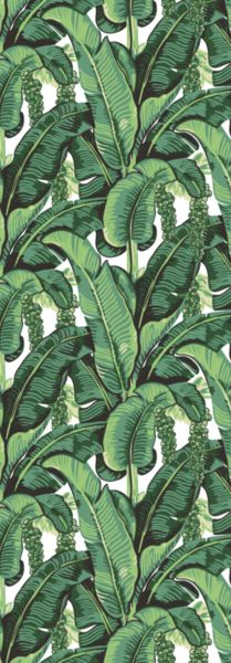 This BANANA LEAF wallpaper represents all aspects of the jungle with tropical palms and fruits. Inspired by the Beverly Hills Hotel Hollywood this LA wallpaper will
