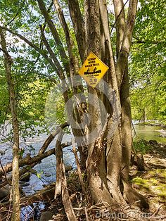 A yellow, diamond-shaped sign is attached to a tree next to the Lehigh River in Laurys Station, Pennsylvania. This sign informs boaters that a water access point is ahead. This Lehigh River Water Trail Access Point is located along the D&L Trail, part of the Delaware & Lehigh Canal National and State Heritage Corridor.