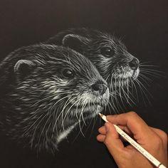 "2,267 Likes, 32 Comments - Richard Symonds Artist (@richardsymondsartist) on Instagram: ""Whiskers everywhere on these otters! #otter #whiskers #blackandwhite #pencil #drawing #art #artist…"""