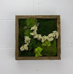 New York  Water free green wall art moss and by FlowerboxUSA