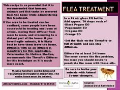 Flea treatment for home