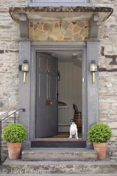 Ideas exterior stone light entrance for 2019 Front Door Steps, Front Door Entrance, Exterior Front Doors, House Front Door, Front Door Colors, Front Entrances, Exterior House Colors, Entrance Ideas, Doorway