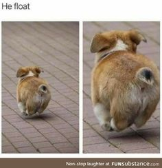 f2a1e6c7cf0922e0bfd463444ece5398 so happy meme collection pinterest meme, funny pictures and humor