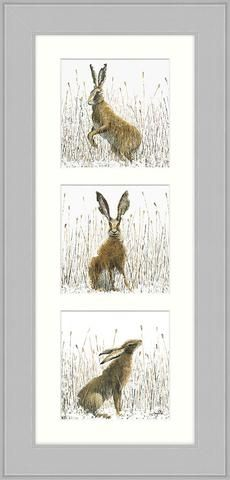 Husk of Hares II - Triptych by Sarah Pye