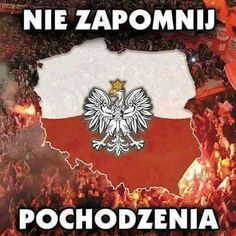 World Country List, Poland Hetalia, Poland Culture, My Roots, My Heritage, Warsaw, Eagles, Cool Stuff, Homeland