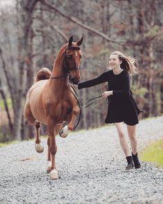 Beautiful! Photo taken by Sarah Bennet