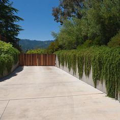 Retained driveway with vines spilling over wall to soften.