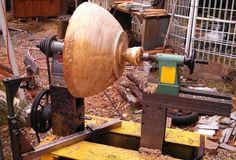 "Cottonwood - 20"" diameter"