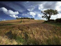 Fields of Gold ~ Eva Cassidy