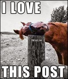 The most awesome post in the world!