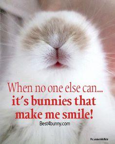 Bunnies always make us smile! www.best4bunny.com