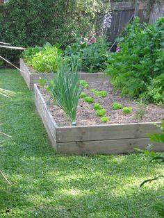 use old pier wood to make flower  - garden beds