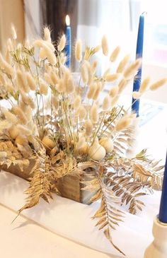 Create stunning designs with tall dried grass bundles, pampas grass for weddings or dried bunny tails for crafts. Whatever your design shop Afloral for a large selection of dried grasses and preserved grass. Country Flower Arrangements, Beautiful Flower Arrangements, Floral Arrangements, Beautiful Flowers, Grass Centerpiece, Decoration Restaurant, Country Wedding Decorations, Bunny Tail, Table Flowers