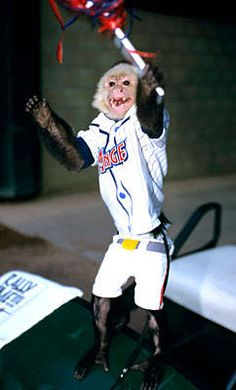 Rally Monkey -- not an official mascot per se, but still full of team spirit