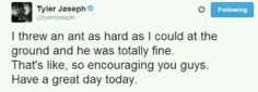 Tyler could start an encouraging twitter account and get lots of followers with tweets like this :D