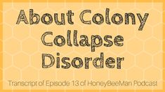 About Colony Collapse Disorder (CCD) HoneyBeeMan Episode 13 Transcript