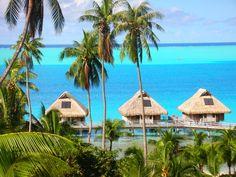 Nature Safaris - French Polynesia