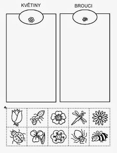 Z internetu – Sisa Stipa – Webová alba Picasa Bee Activities, Gross Motor Activities, Montessori Activities, Educational Activities, Preschool Education, Preschool Worksheets, Sudoku, Insect Crafts, Stipa