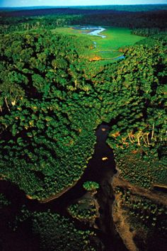 Aerial view of the Congo rain forest. The Congo Rainforest in Central Africa contains one of the longest rivers in the world, the Congo River. The tropical rainforest covers most of the eastern part of the Congo. Rd Congo, Congo River, Beautiful World, Beautiful Places, Maldives Vacation, Viewing Wildlife, Parc National, Africa Travel, Aerial View