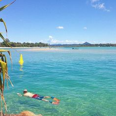 Talk about an inviting spot! The crystal clear waters of the Noosa Spit on a sunny Spring day certainly are hard to resist! This beach is a dedicated off-leash at all times dog beach and is also a popular locals picnic spot and for river boats to pull in to spend the day.