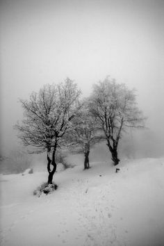 Image result for leaden sky storm and silent snow Pinterest