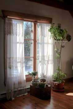 Esthera and Gus's Bohemian Abode. Gah! Those lace curtains and that light.
