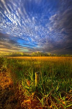on your way back home by phil-koch