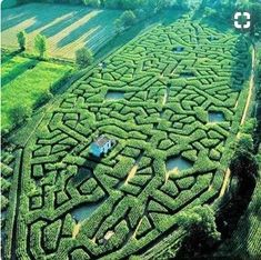 France. Corn maze of Cordes-sur-Ciel