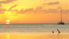 There's nothing like a beautiful sunset. #seeabettertomorrow