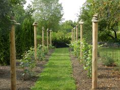 The grape arbor at Northwind Perennial Farm in Burlington, WI designed and built by Steve Coster and the landscape design team (and, of course, the stones are just stacked.) Photo by Cathy Coster Goree