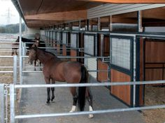 Röwer & Rüb equine barns - runouts Ask Kendra how the black against steel… Barn Stalls, Horse Stalls, Horse Barns, Stables, Paddock Trail, Horse Paddock, Le Terrier, Barn Layout, Horse Barn Designs