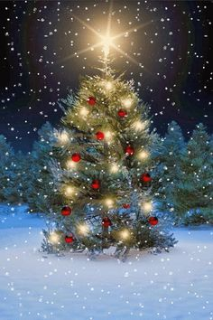 Tree lit up for Christmas (GIF) Noel Christmas, Christmas Images, Winter Christmas, Christmas Lights, Vintage Christmas, Christmas Decorations, Xmas, Animated Christmas Pictures, Illustration Noel