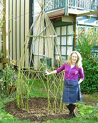 Willow gardening idea  - the trick is in the propagation and the plastic..
