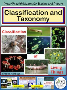 Classification and Taxonomy Powerpoint with Notes for Both Teacher and Student. Highly visual and interactive way to teach classification, taxonomy, cladistics and phylogeny to your biology students.