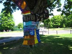 A tree, wearing some clothes in Dublin's iconic Phoenix Park. Information Kiosk, Chesterfield, Dublin, Gates, Phoenix, Modern Art, Irish, To Go, Old Things