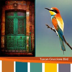 tuscan color palette in burnt orange and royal blue- love the