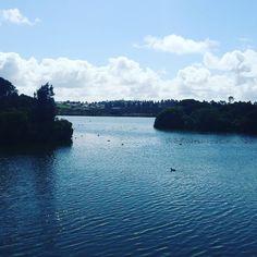 Lake pertobe #lake #pertobe #destinationwarrnambool @destinationwarrnambool #live3280 by lukeread86