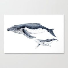 Humpback whale with calf Art Print by chloeyzoard Ocean Sleeve Tattoos, Whale Tattoos, Nature Paintings, Watercolor Paintings, Humpback Whale Tattoo, Whale Drawing, Baleen Whales, Shark Art, Watercolor Whale