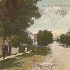 "Ellis Street, Cape Girardeau, MO, postmarked January 25, 1909.  Message on back:  ""Dear Maria, I will send you this card.  How are you?  I am well and hope the same of you.  This is a place near by the Normal, about 4 blocks, its very pretty there in the summer.  Wish I could be with you now, I'm not going to be at home so soon.  Wish you would come to see me some time.  With love, Carrie""  Sent to Miss Maria Mueller, Altenburg, MO. :: Postcard Collection"