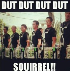 Dut dut dut dut squirrel !!! #Teagardins #SmokeShop 8531 Santa Monica Blvd West Hollywood, CA 90069 - Call or stop by anytime. UPDATE: Now ANYONE can call our Drug and Drama Helpline Free at 310-855-9168. Teagardins.com