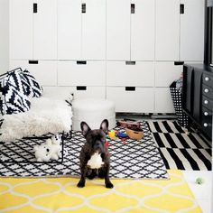 STUVA opbergcombinatie, STOCKHOLM vloerkleed. Deze pin repinnen wij om jullie te inspireren! #IKEArepint