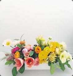 shotgun floral studi