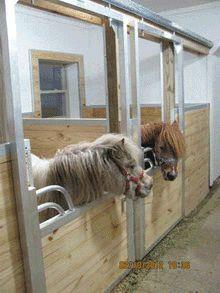 Miniature Horse Stall doors