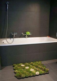 Live moss rug, thrives on bathroom moisture