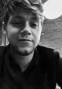 Niall Horan everyone Niall Horan Baby, Naill Horan, Niall Horan Imagines, One Direction Photos, I Love One Direction, 0ne Direction, Direction Quotes, James Horan, Liam Payne