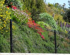 Welded Wire Fencing, Welded Wire Fence Panels, specs and sheets Wire Fence Panels, Welded Wire Fence, Projects To Try, Plants, Outdoor, Outdoors, Flora, The Great Outdoors, Plant